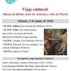 Museo de Bellas Artes y villa de Pravia